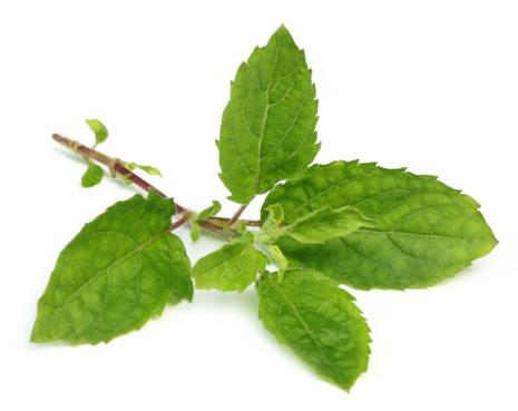 Ayurvedic herbs for skin whitening